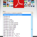 Internal Error de Acrobat Reader XI en Windows Server 2012